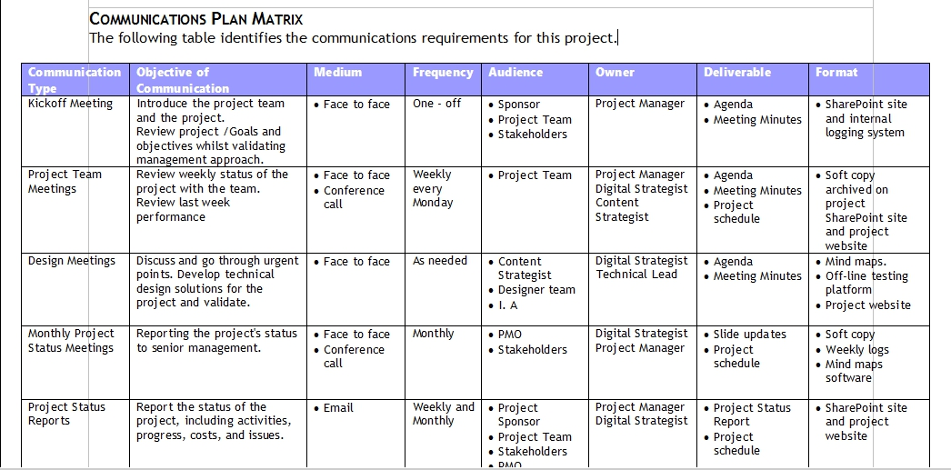 Web strategy services online strategy for online businesses for Project communication matrix template